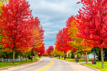 autumn colors on a Kewaunee, Wisconsin town street